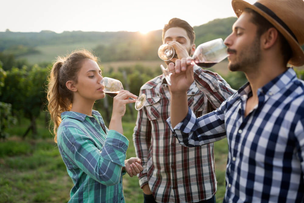 people drinking wine
