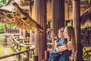 mother and child feeding giraffe