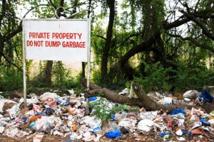 litter in forested area