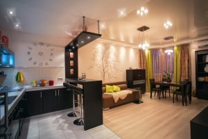 small well decorated studio apartment without a bed