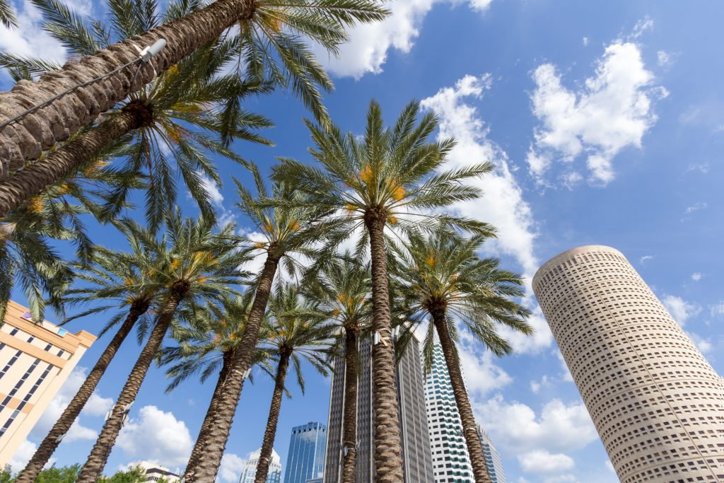The Pros and Cons of Living in Tampa, FL